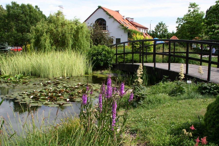 ogrod botaniczny Powsin - Atrakcje
