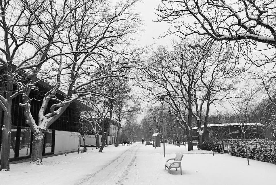 zima1 - Tężnia solankowa czynna w okresie ferii zimowych!