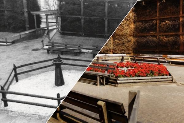 teznia solankowa - Archiwalne zdjęcia tężni solankowej - to już 40 lat!